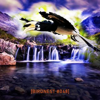 BIRDNEST #048 | Deep Sunday Flight | Podcast by The Lahar