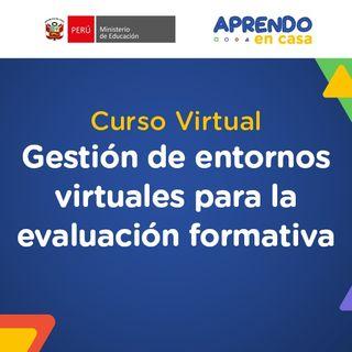 Bienvenido al curso Gestión de entornos virtuales para la evaluación formativa