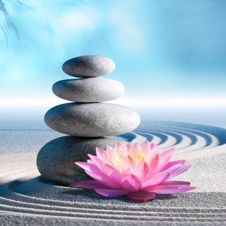 La Meditazione a 360°  - Tra Scienza, Filosofia e Spiritualità (con il prof. Franco Fabbro)