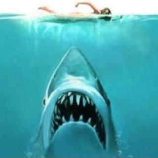 Jaws ,Interviews, Facts,