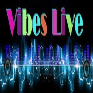 VIBES-LIVE RADIO INDEPENDANT ARTIST REVIEW WITH ROBINLYNNE AND BOUDIN MAN
