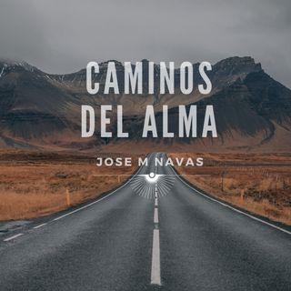 CAMINOS DEL ALMA I REFLEXIONES