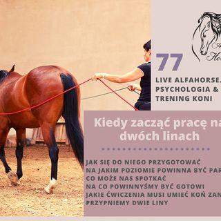 Live 77: Kiedy zacząć z konie pracę na dwóch linach
