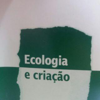 Os Cristãos e a Crise Ecológica