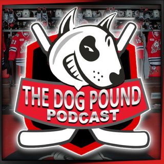 The Dog Pound Podcast | Christmas Special | Cam Snow Interview