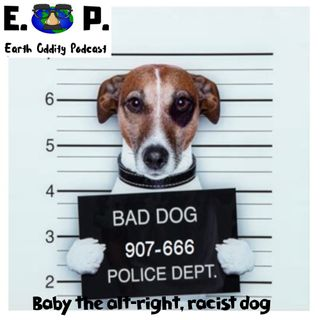 Earth Oddity 45: Baby the alt-right, racist dog!