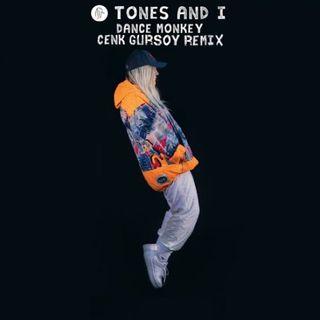 Dance Monkey  (Cenk Gursoy Remix)
