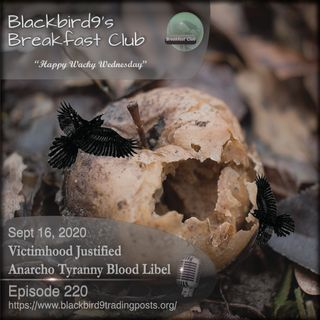 Victimhood Justifed Anarcho Tyranny Blood Libel - Blackbird9 Podcast