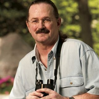 National Geographic Birding Expert, Artist & Author Jonathan Alderfer on Big Blend Radio