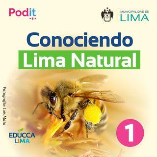 T1. Ep. 27 | Conociendo Lima Natural