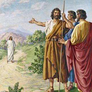 Ecce Agnus Dei!🙏🏻😇🥰 Buona domenica e buona festa di Sant'Antonio!