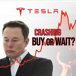 93. Tesla Stock Crashing | Taylor Ogan