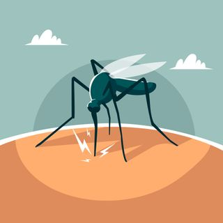 Mosquito_Problem_and_Solutions_Singapore