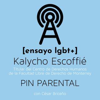PIN Parental, el nuevo ataque antiderechos - [ensayo lgbt+]