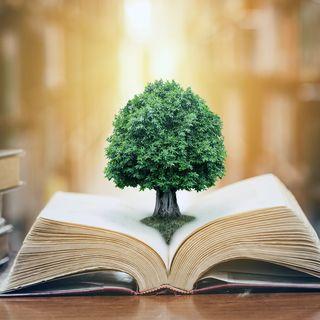 STEUBENVILLE WISDOM SERIES - Dr. Scott Hahn: Two Wisdoms Two Loves