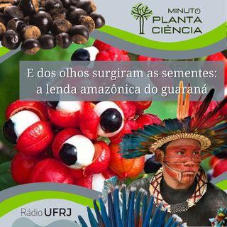 Minuto PlantaCiência - Ep. 25 - E dos olhos surgiram as sementes: a lenda amazônica do guaraná (Rádio UFRJ)