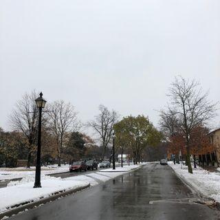 Snowy Friday