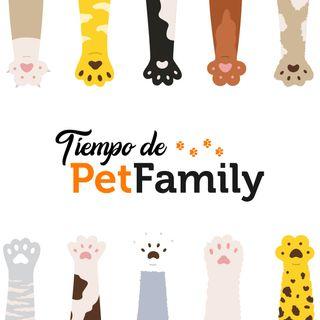Amigos de Pelos - Canción para las médicas y médicos veterinarios