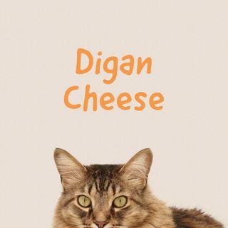33: Digan Cheese