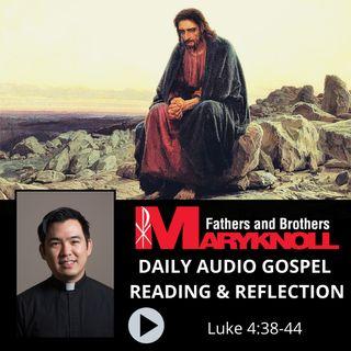 Luke 4:38-44, Daily Gospel Reading and Reflection