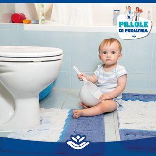 Le infezioni delle vie urinarie