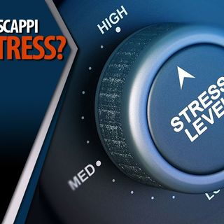 Gian Mario Migliaccio | Combatti o Scappa? Come reagisce il nostro organismo ad uno stress?