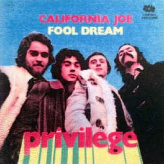 Privilege - Fool dream