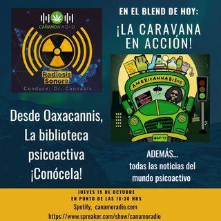 Radiosis Sonora Numero 11
