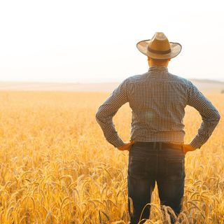 When will the Morrison government focus on policy that gets farming going, not on the 24-hour news cycle?