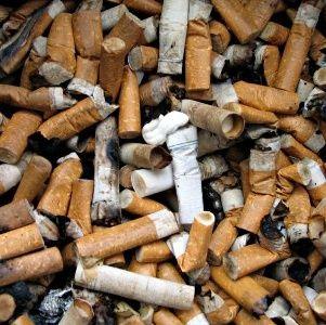 Fumo nelle Scuole