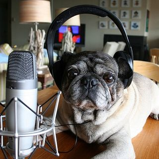 Podcast 25 - Para el nuevo podcaster ;)