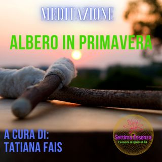 MEDITAZIONE DELL' ALBERO IN PRIMAVERA