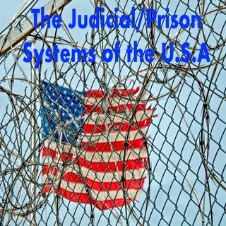 The Judicial-Prison Sytems in the USA