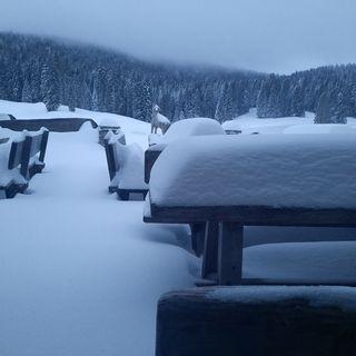 Neve d'aprile sull'Altopiano ma anche a Recoaro e alta valle del Chiampo (foto/video)