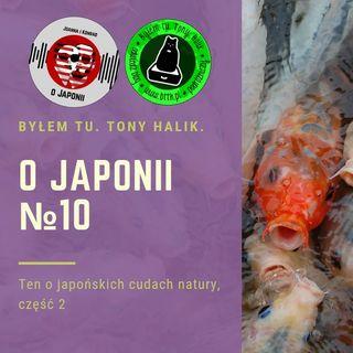 O Japonii №10 (ten o japońskich cudach natury, część 2)