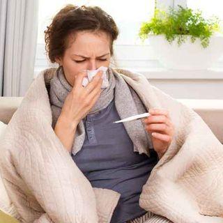 Apoya el bienestar de tú sistema respiratorio con aceites esenciales