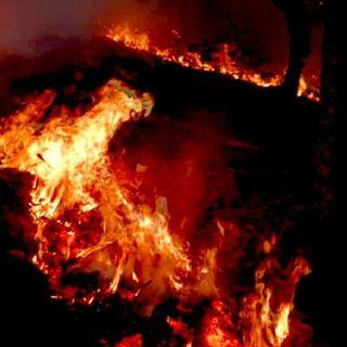 Emergencia a 13 municipios de Oaxaca, por incendios forestales
