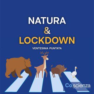 Natura & Lockdown (Ventesima Puntata)