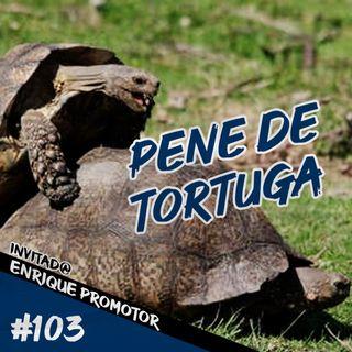 Episodio 103 - Pene De Tortuga