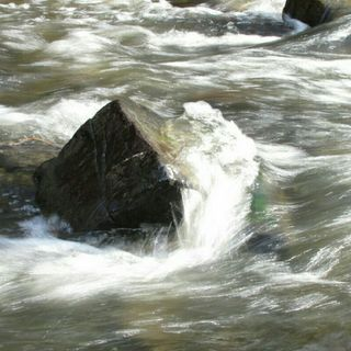 MICHAEL - A ROCK IN A RIVER