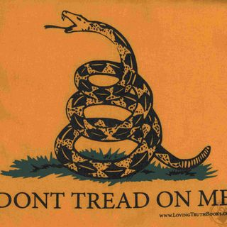 Don't Tread On Me Episode 31: New Equipment