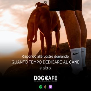 #065 - Q&a quanto tempo dedicare al cane e altro.