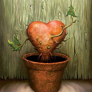 Amargura - O Desgosto da Vida - Ana D' Araújo