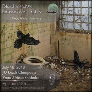 JQ Lead Chimpouts From Africa - Blackbird9 Podcast
