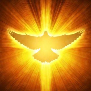 """Sesta domenica tempo di Pasqua: """"Becchini""""del Vangelo? Guai a voi!"""