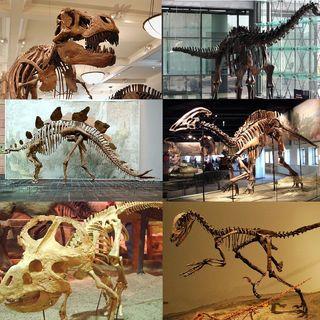 #58: Dinosaurs - A Geological Murder Mystery