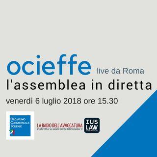 Assemblea OCF 6-7 luglio 2018 – Venerdì 6 luglio 2018
