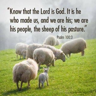 Abiding Life Scripture Meditations - Psalm 139