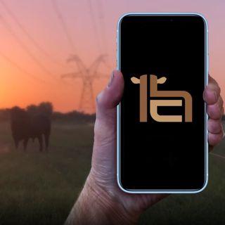 #167 - Texas Cattle Rancher Designs Award Winning Mobile App
