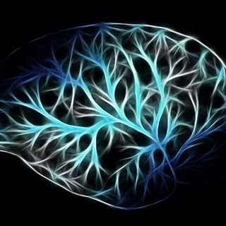 The most extraordinary tool humans possess: ther Brain